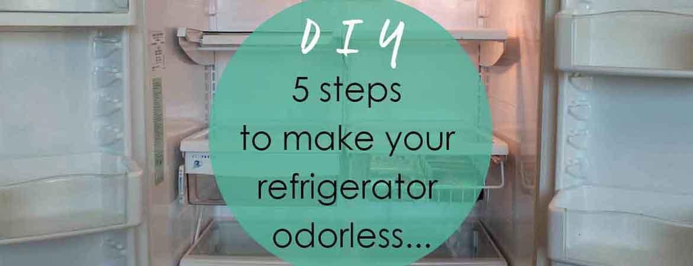 DIY refrigerator odorless
