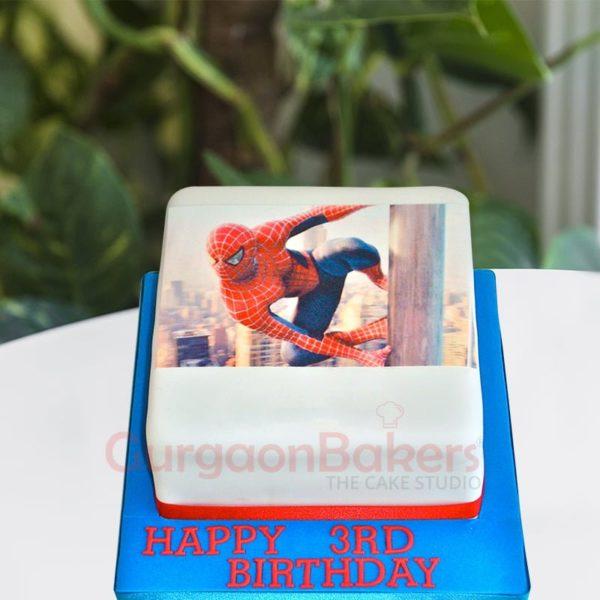 realistic spiderman photo cake