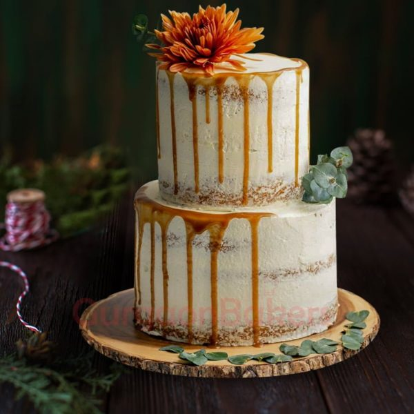 semi naked vanilla 2 tier cake