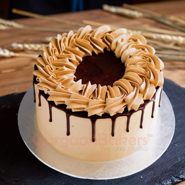 birthday special chocolate cake
