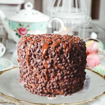 choco-chip-cake